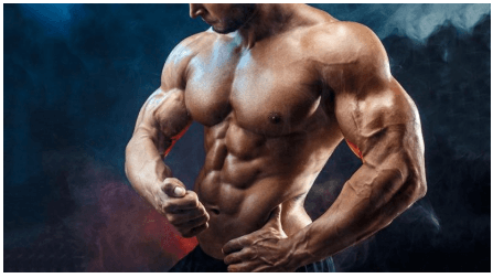 Top Steroid Sites: Choosing a Steroid Site to Trust For Your Body-building Needs